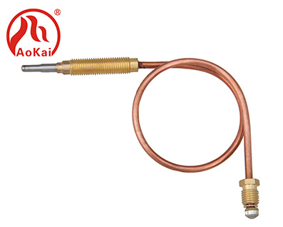 Thermocouple PTE-S38-1-310